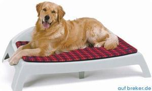 Hundezubehör günstig online kaufen