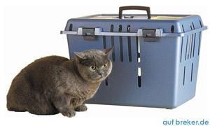 Katzen Transportbox günstig online kaufen
