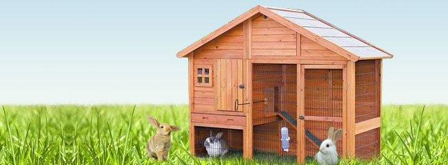 Kaninchen Zubehör günstig online kaufen