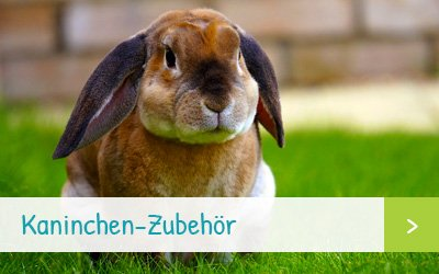 Kaninchen-Zubehör