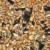 25kg Mecklenburger Landkörnerfutter – GVO frei -