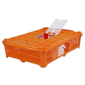 Geflügeltransportkiste für Tauben/Wachteln, orange, 67x40x13 cm -