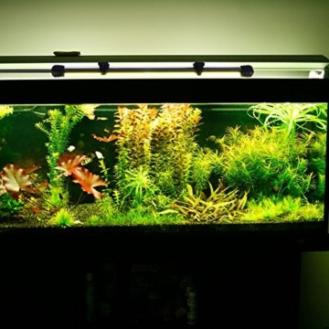 ACRATO Aquarium Led Beleuchtung Tank Lichter Farbwechsel 18 Leds mit Fernbedinung Wasserdicht 38CM -