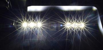 Aquarium gewölbt mit Abdeckung inkl. LED Beleuchtung im Set (40x25x25 AP + Abdeckung LED) -