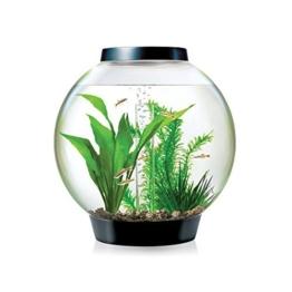 Baby biOrb Kugel Aquarium 15 l – Schwarz – Design Komplett Aquarium 15 Liter -