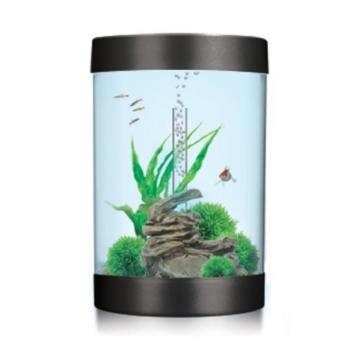 biUbe 35 Liter Komplett-Aquarium mit Halogen Lichteinheit – Schwarz – Blaustich -