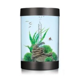 biUbe 35 Liter Komplett-Aquarium mit Halogen Lichteinheit – Schwarz - Blaustich -