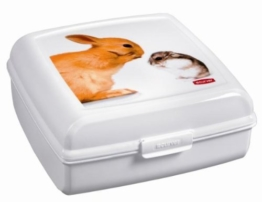 Curver 02273-P75-01 Pet-Snack-Box 'L' 2.7 L, 20.2 x 20.11 x 8.6 cm -