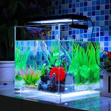 Superior DECKEY Aquarium Beleuchtung LED Aquariumlicht Aquariumleuchten  Aquariumlampen Aufsetzleuchte 30cm Weiß+blau (30cm)