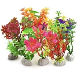 DIGIFLEX 10 x verschiedene Aquariumpflanzen Aquarien -