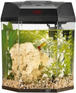 "infactory Beleuchtetes Panorama-Aquarium ""Hexagon"", Komplett-Set, 19 l -"