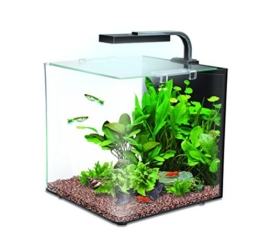 Interpet Nano LED-Aquarium-Komplettset -