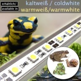 LED-Beleuchtung (kaltweiß, 90cm) Simulator Steuerung Terrarium/Aquaterrarium/Vivarium Reptilien Amphibien Spinne Insekt TB5WW -