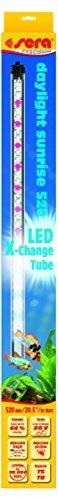 sera 31255 LED daylight sunrise 520 - Farbechtes und natürliches Tageslicht (6.000 - 8.000 Kelvin) -