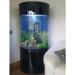 Spalte Zylinder Aquarium Fisch Tank -