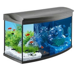 Tetra AquaArt Evolution Line LED Aquarium-Komplett-Set 100 Liter anthrazit (moderne LED Beleuchtung, integrierte Tag-Nachtlichtschaltung, gebogene Frontscheibe) -