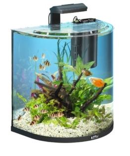 Tetra AquaArt Explorer Line Aquarium Komplett-Set 60 Liter anthrazit (gewölbte Frontscheibe, langlebige LED-Beleuchtung, ideal für die Haltung von tropischen Zierfischen) -