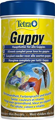 Tetra Guppy (Hauptfutter für Guppys und andere lebendgebärende Zahnkarpfen, Miniflocken mit Farberstärkern), 250 ml Dose -