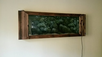 Wandaquarium- Dark Wood 160, Panorama Aquarium - Wall Aquarium -