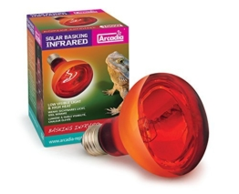 Arcadia Reflektorlampe 100 Watt E27 Reptilien Wärmelampe rot Terrarium Vivarium Infrarot -