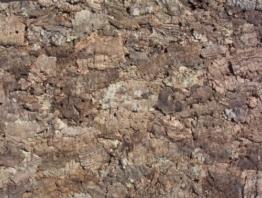 Korkrückwand Natur 60x30 cm, Terrarium, Kork Rückwand -