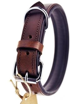 Schnüffelfreunde Hundehalsband aus Leder (M - 28-36cm, Braun) -