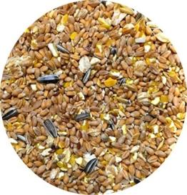 StaWa VitalMix Hühnerfutter Geflügelkörnerfutter Körnerfutter 25kg !!!GVO frei!!! mit Leinsaat & Hanfsaat + Oregano -