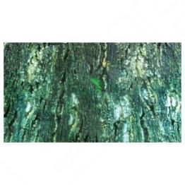 Trixie Terrarium Rückwand doppelseitig mit Tropic/bark Motiv, 150x 60cm, 4Stück -
