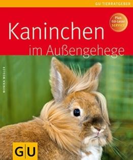 Kaninchen im Außengehege -