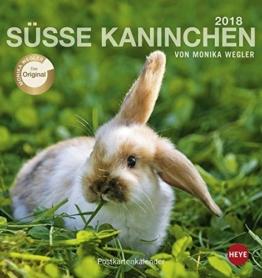 Kaninchen Postkartenkalender - Kalender 2018 -