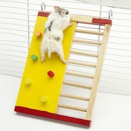 Kleintier Aktivität Spielzeug Aktivität Hamster Turnhalle Rutsche aus Holz -