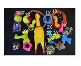 20tlg Hundespielzeug Set Hundebälle Knotenseil - 1