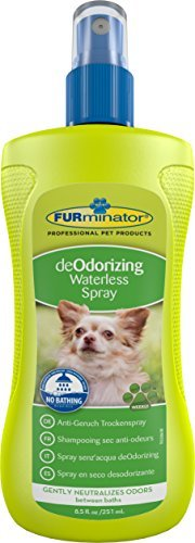FURminator Anti-Geruch Trockenspray für Hunde, neutralisiert sanft Gerüche bis zum nächsten Bad, 1 Sprühflasche (1 x 250 ml) - 1