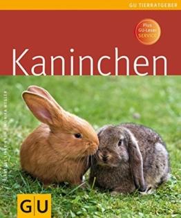 Kaninchen - 1