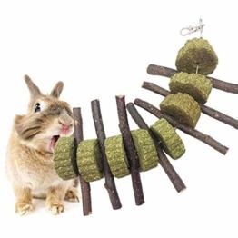 KOBWA Apple Sticks Pet Snacks Kauen Spielzeug, natürliche lustige Gras Behandlung Ball Haustier Katze Essbare Spielzeug Molaren für Kaninchen, Chinchillas, Hamster, Meerschweinchen - 1