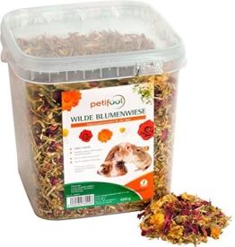 petifool Nager-Ergänzungsfutter Wilde Blumenwiese, natürliches und gesundes Kaninchenfutter, 1er Pack (1 x 600 g) - 1