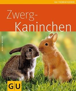 Zwergkaninchen (GU TierRatgeber) - 1