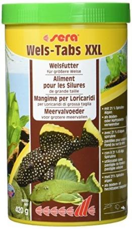 sera Wels-Tabs XXL 1.000 ml das Futter für größere Welse: Als Boden- oder Hafttablette nutzbar - 1